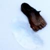 Trace petits pieds racines